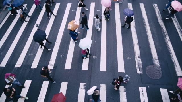 vidéos et rushes de taipei, taiwan - gens piétons traversent une route en jour de pluie - taipei