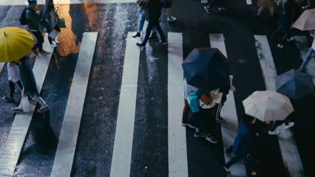 taipei taiwan  - pedestrian people cross a road in rainy day - crossing stock videos & royalty-free footage