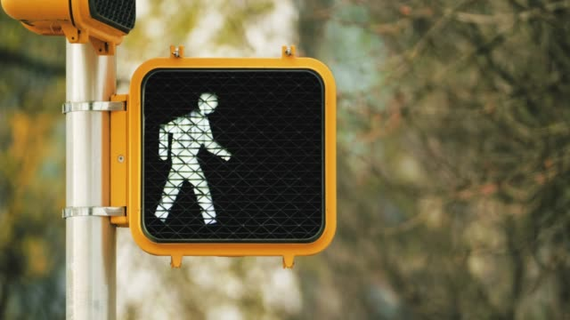 pedestrian traffic light in an american city street - semaforo video stock e b–roll