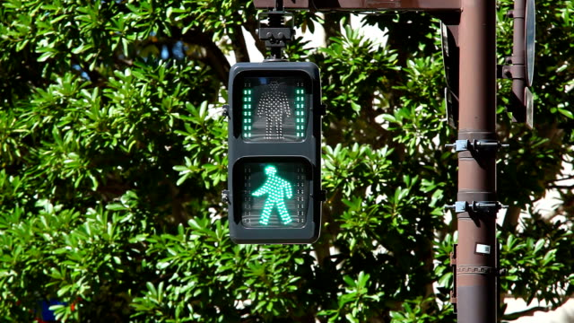 pedestrian walk light - road signal stock videos & royalty-free footage