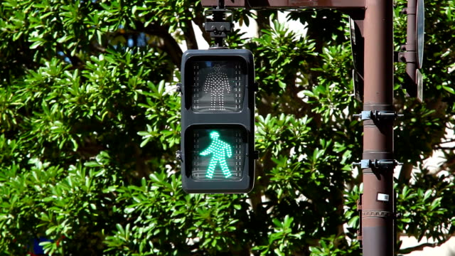 Pedestrian walk light-bus crosses