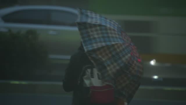 pedestrian with umbrella in storm, tokyo, japan - ombrello video stock e b–roll