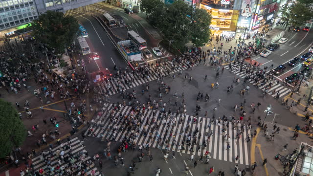 pedestrians and car crowd undefined people walking overpass the street intersection cross-walk in shibuya - crossing stock videos & royalty-free footage