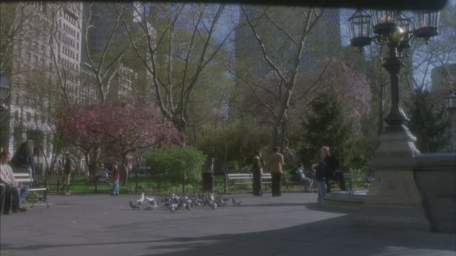 Pedestrians and pigeons in Central Park.
