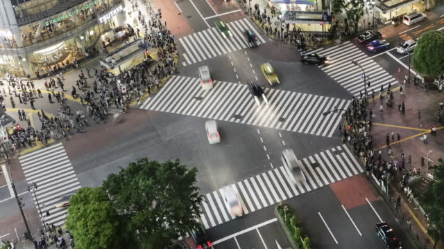vídeos de stock, filmes e b-roll de tl, ls, ha pedestrians and traffic cross a busy crosswalk lit by flickering video screens in shibuya / tokyo, japan - time lapse de trânsito