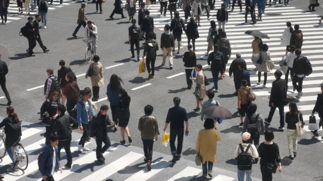 pedestrians crossing at shibuya, crowd - pedestrian crossing stock videos and b-roll footage