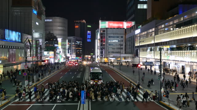 歩行者の横断新宿駅で夜の時間 - 駅点の映像素材/bロール