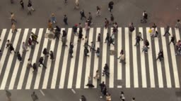 Pedestrians crossing Shibuya day time - slow motion
