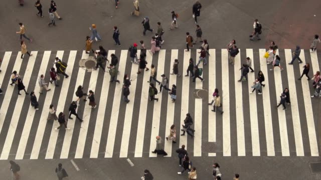 pedestrians crossing shibuya day time - slow motion - crossroad stock videos & royalty-free footage