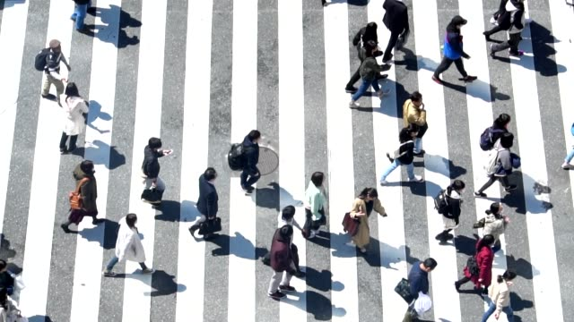 pedestrians crossing shibuya day time - slow motion - crosswalk stock videos & royalty-free footage