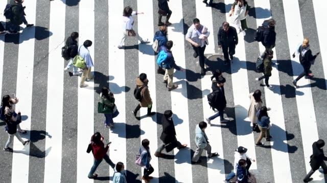 vídeos y material grabado en eventos de stock de peatones que cruzan shibuya día - cámara lenta - paso de cebra