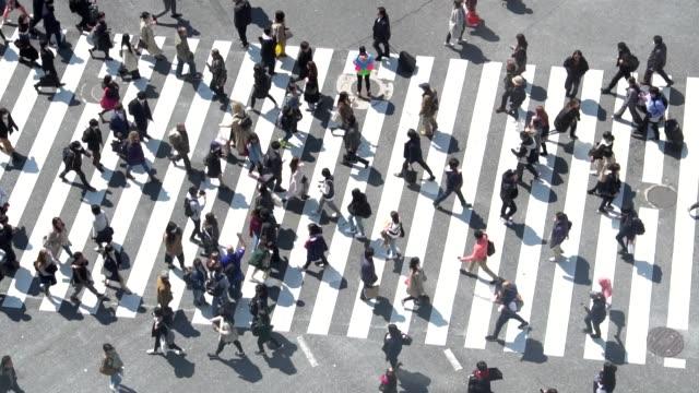 vídeos de stock e filmes b-roll de pedestrians crossing shibuya day time - slow motion - distrito