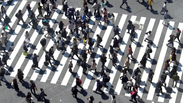 pedestrians crossing shibuya day time - slow motion - zebra crossing stock videos & royalty-free footage