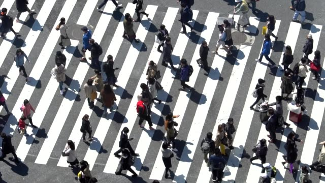 pedestrians crossing shibuya day time - slow motion - crosswalk stock videos & royalty-free footage