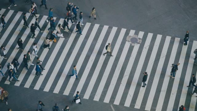 pedestrians crossing street at shibuya intersection aerial view - zebra crossing stock videos & royalty-free footage