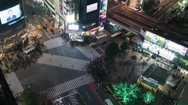 vídeos de stock e filmes b-roll de pedestrians crossing street at shibuya intersection aerial view - passadeira via pública