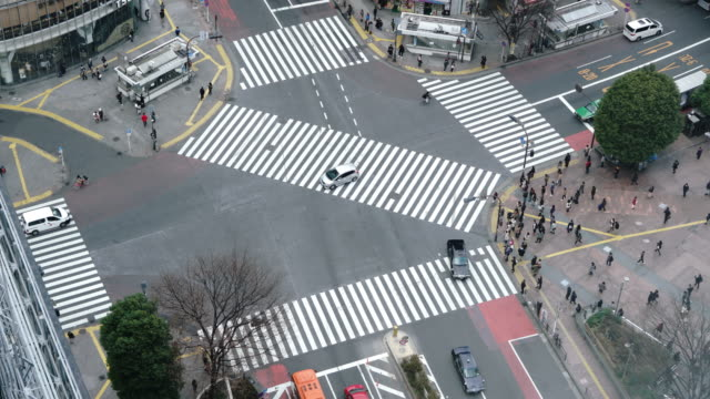 pedestrians crossing street at shibuya intersection aerial view - shibuya crossing stock videos & royalty-free footage