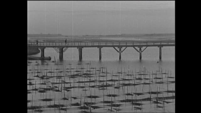 pedestrians walk across a bridge over the river near a nori farm. / shot at somewhere in japan on january 9th, 1960 / more info is not available, but... - 海草点の映像素材/bロール