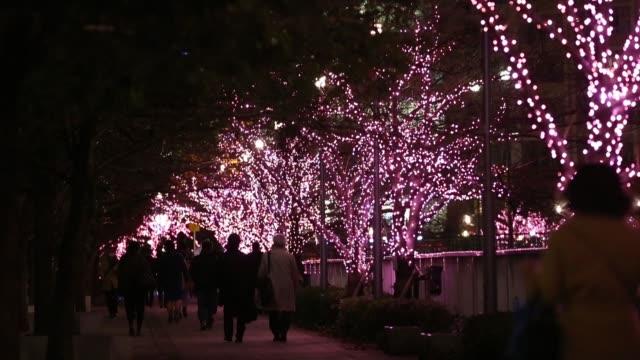 pedestrians walk past cherry trees decorated with light emitting diode lights along the meguro river during the megurogawa minnano illumination 2016... - ナイトイン点の映像素材/bロール