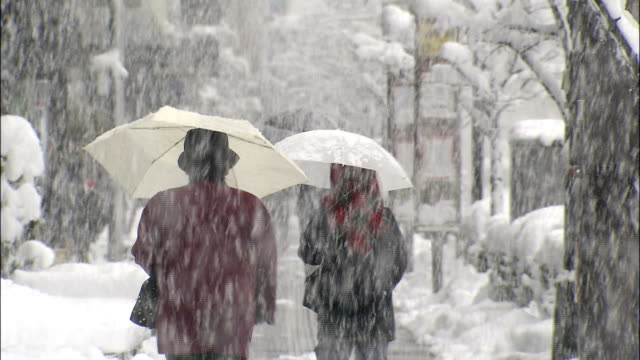 pedestrians with umbrellas walk down pavement in heavy snowfall - warm clothing stock videos and b-roll footage