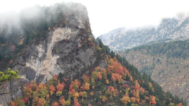 vídeos de stock, filmes e b-roll de outono de pedraforca; cordilheira cadí - outubro nas montanhas catalãs - pinhal