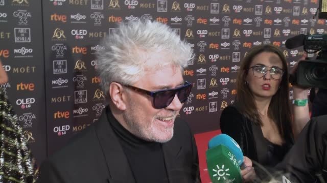 Pedro Almodovar attends the Goya Cinema Awards 2019 during the 33rd edition of the Goya Cinema Awards at Palacio de Congresos y Exposiciones FIBES on...