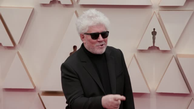 pedro almodóvar at the 92nd annual academy awards at the dolby theatre on february 09, 2020 in hollywood, california. - the dolby theatre stock videos & royalty-free footage