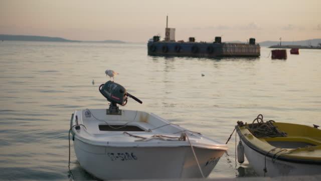 vídeos y material grabado en eventos de stock de pelican on small boat dinghy at harbor in split croatia - región de dalmacia croacia