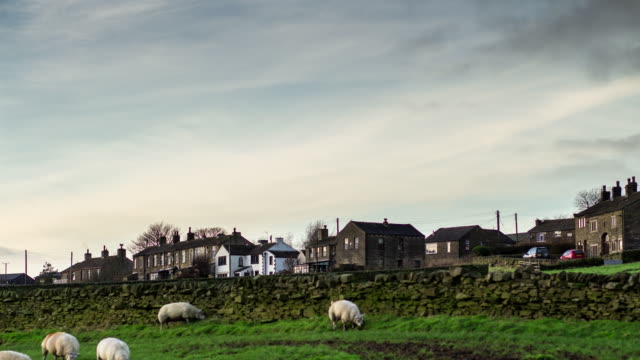 pennine village with sheep - yorkshire england stock videos & royalty-free footage