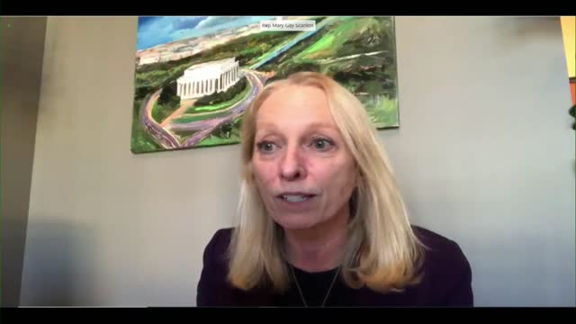 pennsylvania congresswoman mary gay scanlon says at videoconference house rules committee hearing to set floor debate parameters for resolution... - partisan politics stock videos & royalty-free footage
