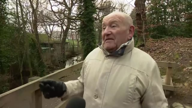 Pensioner who witnessed US WW2 plane crash campaigns for commemorative flypast ENGLAND Sheffield Endcliffe Park EXT Tony Foulds interview SOT