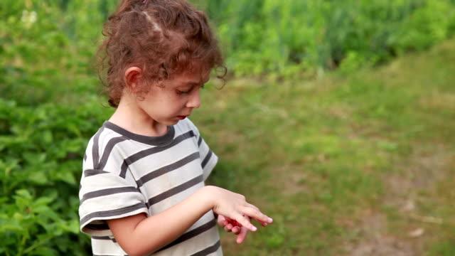 裏庭でベリーを食べるペンシブな小さな女の子 - ため息点の映像素材/bロール