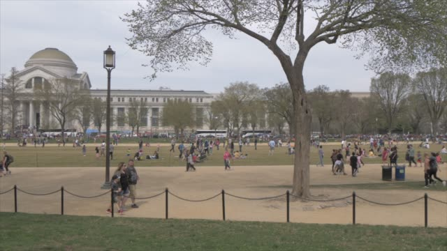 vídeos y material grabado en eventos de stock de people and activities on national mall during spring break, washington dc, united states of america, north america - instituto smithsoniano