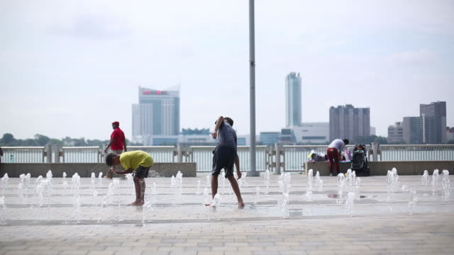 people and dogs cooling down in water during heat wave at belle isle in detroit michigan usa on friday june 19 2019 - fontana struttura costruita dall'uomo video stock e b–roll