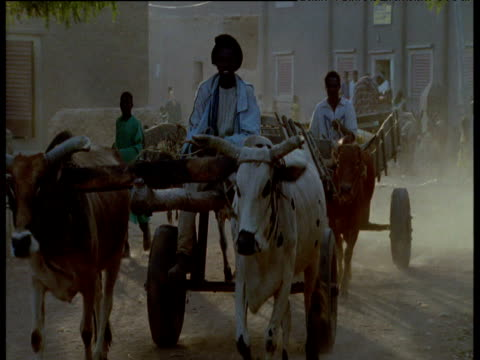 People and ox-drawn carts in dusty streets of Djenne