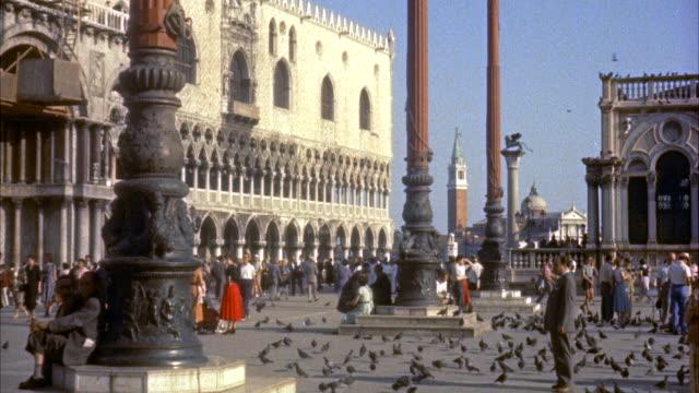 vidéos et rushes de ms people and pigeons in saint marks square / venice, italy - venise