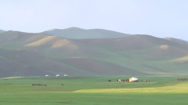 people, animals and cattle moving through open landscape until sunset - arbeitstier stock-videos und b-roll-filmmaterial
