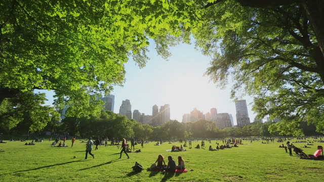 tu people are relaxing on the sheep meadow that is surrounded by fresh green trees. central park west residences can be seen behind. - マンハッタン セントラルパーク点の映像素材/bロール