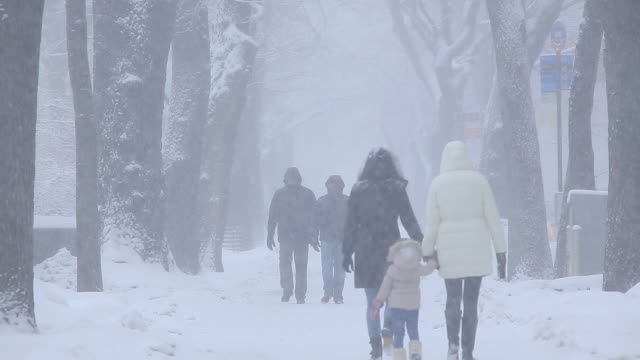 People are walking down the Fifth Avenue Sidewalk which is surrounded by snowy trees line.