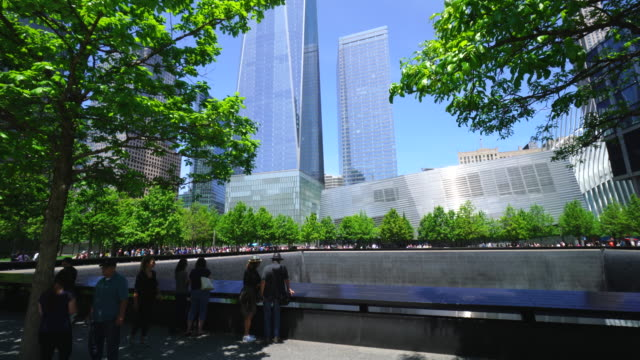 tu people at 911 memorial south pool, which are surrounded by rows of fresh green trees and skyscrapers. - clear sky stock videos & royalty-free footage