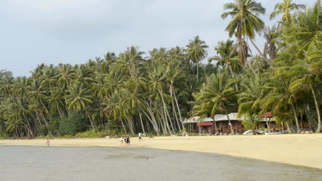 people at sandy beach with palmtrees - gulf of thailand stock videos & royalty-free footage