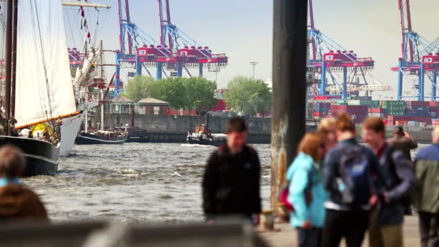 people at the harbor of hamburg and elbe river - river elbe stock videos & royalty-free footage