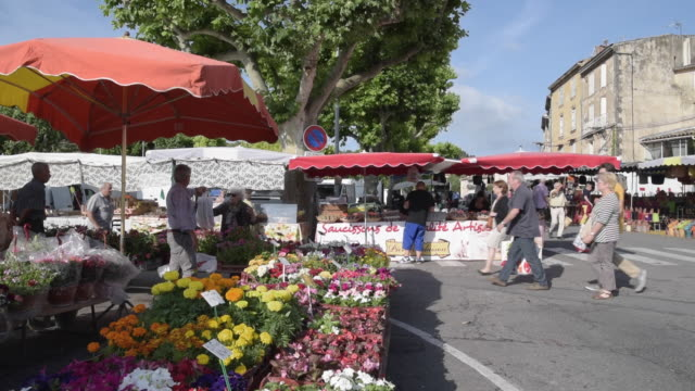 people at weekly street market at flower stall - apt stock videos and b-roll footage