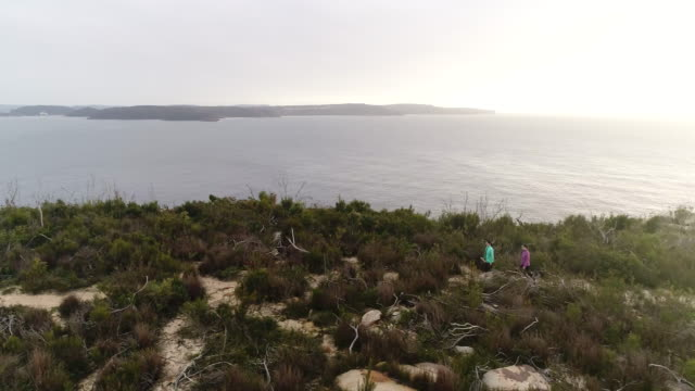 people barrenjoey hike 2 left panning - bush stock videos & royalty-free footage