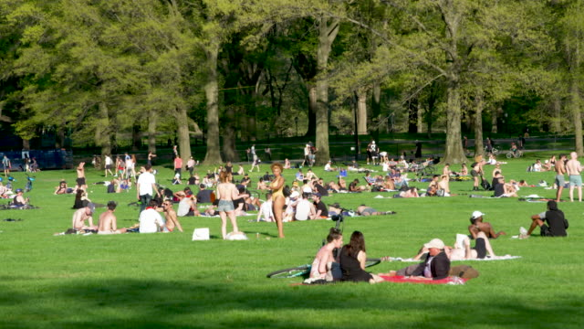 people basking in the spring season sun in central park's sheep meadow in new york city amid the outbreak of the coronavirus disease some wore facial... - sunbathing stock videos & royalty-free footage