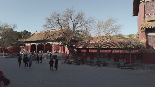 people begin to travel again in the forbidden city, beijing and look at the treasures held within the museum. this is following tight restrictions... - peking bildbanksvideor och videomaterial från bakom kulisserna