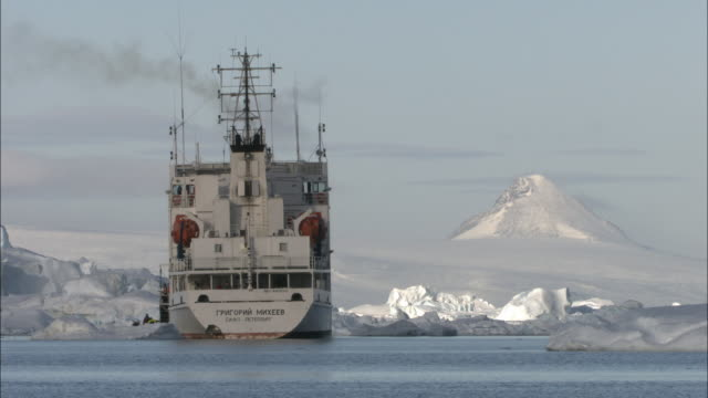 WS, PAN, People boarding into ship, South Georgia Island, Antarctica, HA