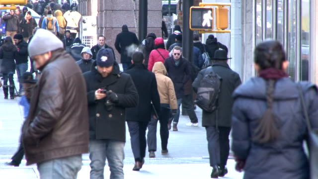 people braving extremely cold temperatures in nyc as some of the coldest air of the season blankets the northeast due to the polar vortex - scott mcpartland bildbanksvideor och videomaterial från bakom kulisserna