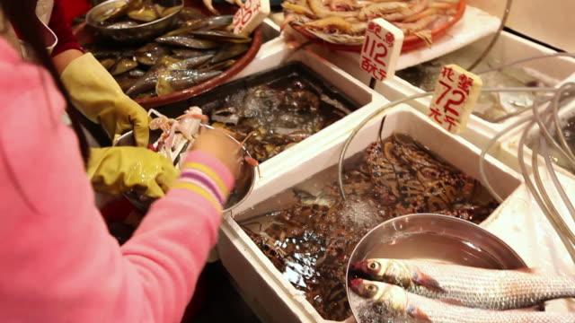 ms people buying fresh seafood at market / hong kong, china - fish market stock videos and b-roll footage