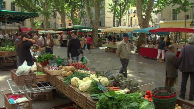 vídeos de stock, filmes e b-roll de ms people buying vegetables in market / aix-en-provence, provence, france - aix en provence